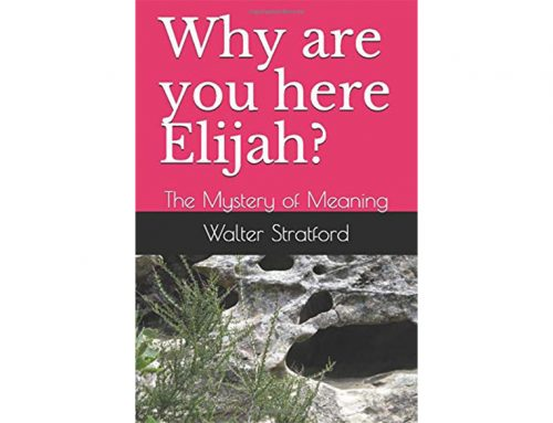 Why are you here Elijah?: The Mystery of Meaning